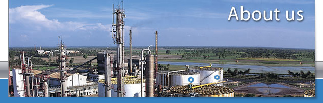 India Glycols | About us | Management team